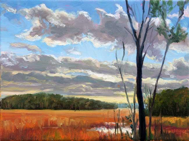 marsh_morning_tw_takeyce